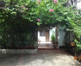 Spacious Single Storey House for Rent