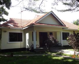 IDEAL SPACIOUS SINGLE STOREY HOUSE FOR RENT